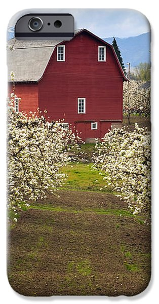Red Barn Spring iPhone Case by Mike  Dawson
