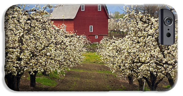Barns Photographs iPhone Cases - Red Barn Spring iPhone Case by Mike  Dawson