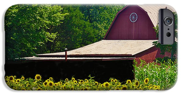 Old Barns iPhone Cases - Red Barn Surrounded iPhone Case by Sandi OReilly