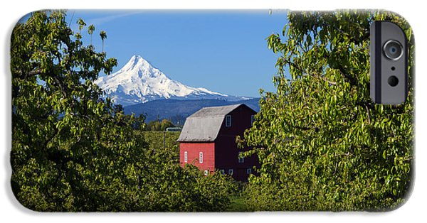 Pears iPhone Cases - Red Barn View iPhone Case by Mike Dawson