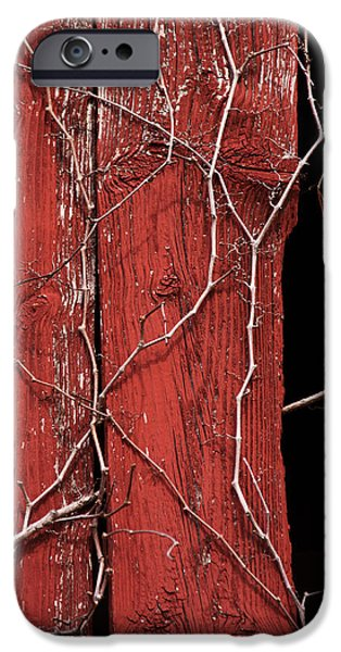 Maryland Barn Photographs iPhone Cases - Red Barn Wood with Dried Vines iPhone Case by Rebecca Sherman