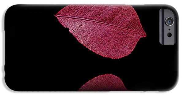 David iPhone Cases - Red Beauty iPhone Case by David Dehner