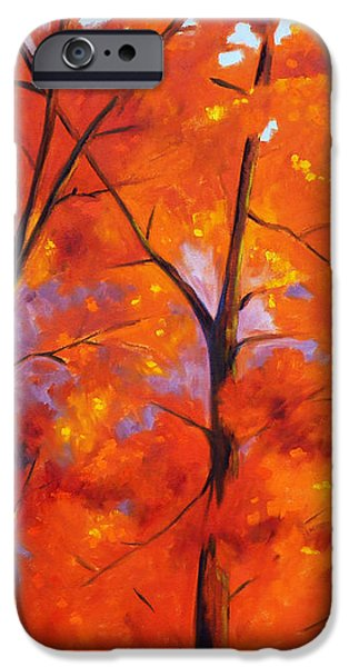 Red Blaze iPhone Case by Nancy Merkle