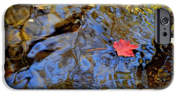 Willow Lake iPhone Cases - Red Blue and Gold iPhone Case by Frozen in Time Fine Art Photography