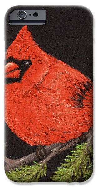 Animal Cards Pastels iPhone Cases - Red Cardinal iPhone Case by Anastasiya Malakhova