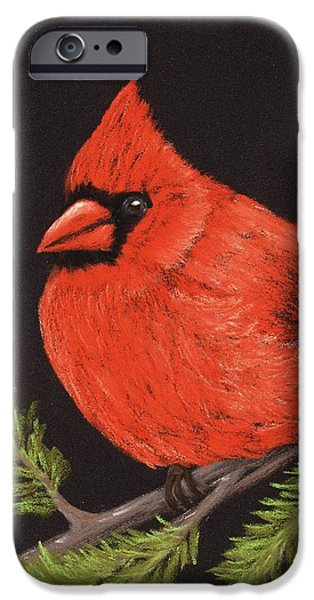 Pine iPhone Cases - Red Cardinal iPhone Case by Anastasiya Malakhova