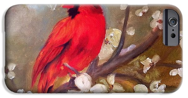 Birds iPhone Cases - Red Cardinal iPhone Case by Freida Petty