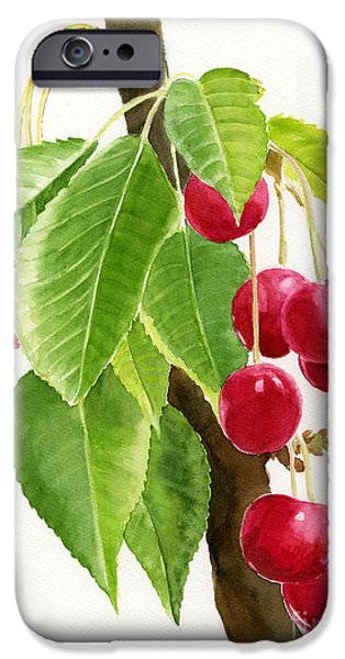 Fruit Tree iPhone Cases - Red Cherries on a Branch iPhone Case by Sharon Freeman