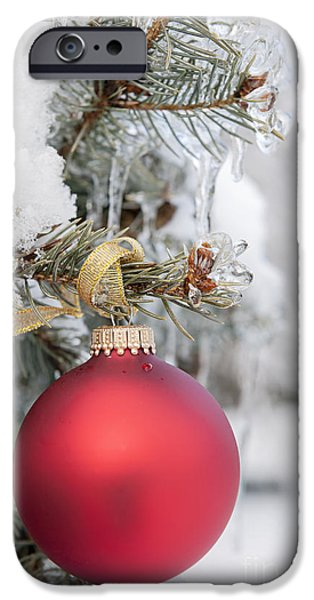 Snowy iPhone Cases - Red Christmas ornament on snowy tree iPhone Case by Elena Elisseeva