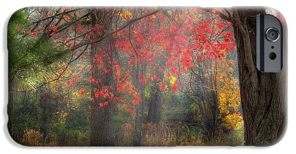 Connecticut Landscape iPhone Cases - Red Dawn Square iPhone Case by Bill  Wakeley