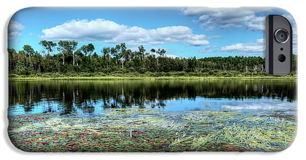 Pines iPhone Cases - Red Deer Lake  Ontario Canada iPhone Case by Elaine Manley