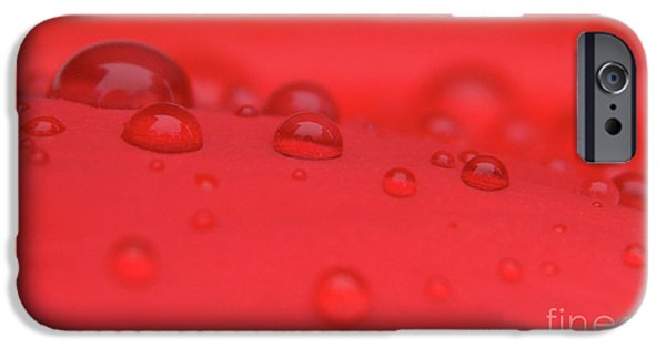 Rainy Day iPhone Cases - Red Drops iPhone Case by Karol  Livote
