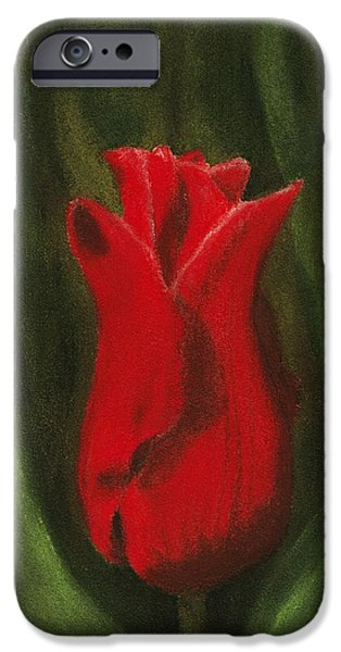 Close Pastels iPhone Cases - Red Elegance iPhone Case by Anastasiya Malakhova