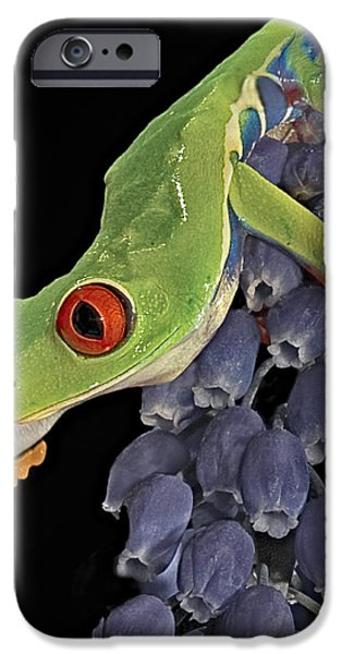 Red Eye  iPhone Case by Susan Candelario
