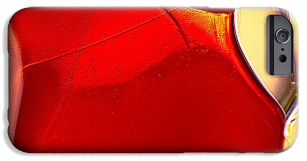 Fine Abstract Glass iPhone Cases - Red Fish iPhone Case by Omaste Witkowski