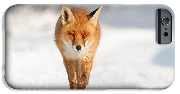 Red Eye iPhone Cases - Red Fox in a White World iPhone Case by Roeselien Raimond