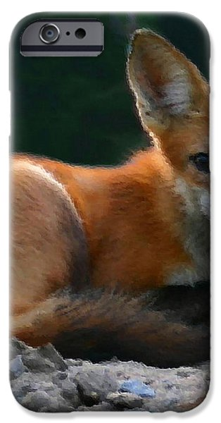 Red Fox iPhone Case by Kristin Elmquist