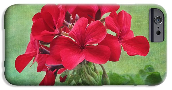 Red Geraniums iPhone Cases - Red Geranium Flowers iPhone Case by Kim Hojnacki
