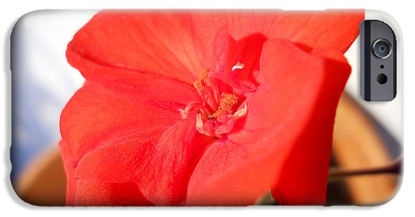 Fabulous Gifts iPhone Cases - Red Geranium iPhone Case by Ramona Matei