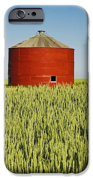 Dave iPhone Cases - Red Grain Bin In Wheat Field Sceptre iPhone Case by Dave Reede