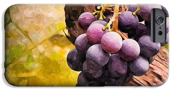 Grapevine Red Leaf iPhone Cases - Red grapes in the vineyard with boke iPhone Case by Lanjee Chee