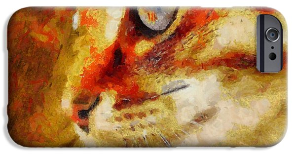 Gray Hair Paintings iPhone Cases - Red-haired Cat iPhone Case by Victor Gladkiy