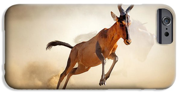 Run iPhone Cases - Red hartebeest running in dust iPhone Case by Johan Swanepoel