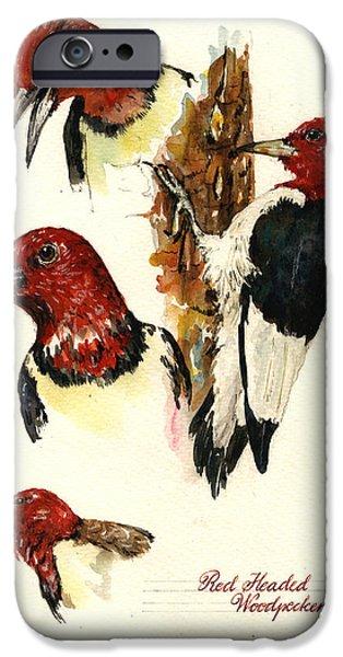 Woodpecker iPhone Cases - Red headed woodpecker bird iPhone Case by Juan  Bosco