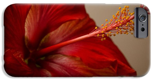 Multimedia iPhone Cases - Red Hibiscus 5 iPhone Case by Frank Mari