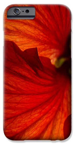 Multimedia iPhone Cases - Red Hibiscus 6 iPhone Case by Frank Mari
