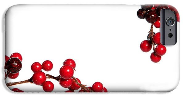 Berry iPhone Cases - Red Holly iPhone Case by Olivier Le Queinec
