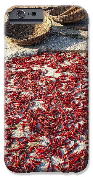 Chilli iPhone Cases - Red Hot Chilli Peppers iPhone Case by Tim Gainey