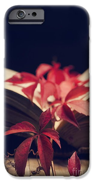 Rust Pyrography iPhone Cases - Red ivy in the book iPhone Case by Jelena Jovanovic