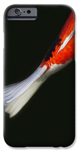 Koi iPhone Cases - Red Koi Tail Down Vertical iPhone Case by Rebecca Cozart