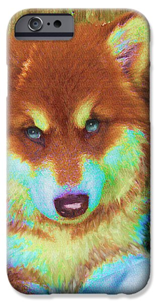 Huskies Digital Art iPhone Cases - Red Malamute iPhone Case by Jane Schnetlage