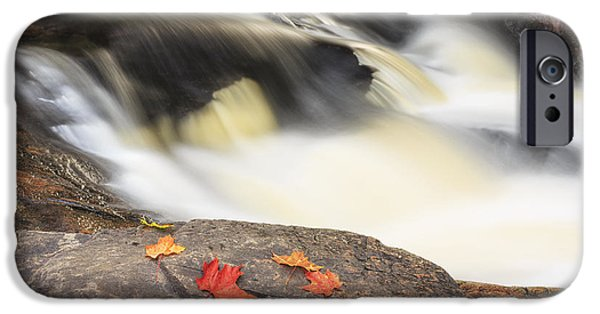 World Changing iPhone Cases - Red Maple Leaves On Rock At Stubb_s iPhone Case by Ken Gillespie