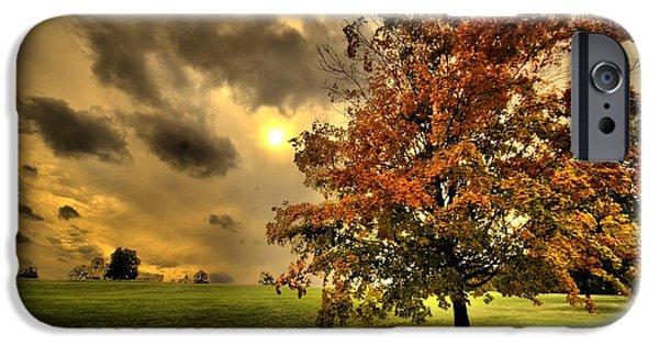 Boston Ma iPhone Cases - Red Maple Tree iPhone Case by Ludmila Nayvelt