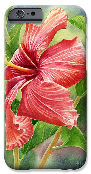 Hibiscus iPhone Cases - Red Orange Hibiscus with Background iPhone Case by Sharon Freeman