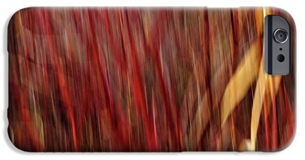 Impressionist Photography iPhone Cases - Red Osier Dogwood iPhone Case by Theresa Tahara