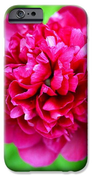 Red Peony Flower iPhone Case by Edward Fielding