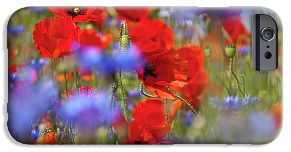 Koehrer-wagner_heiko iPhone Cases - Red Poppies in the Maedow iPhone Case by Heiko Koehrer-Wagner