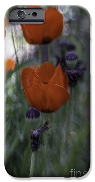Botanical Photographs iPhone Cases - Red Poppies iPhone Case by Jean OKeeffe Macro Abundance Art