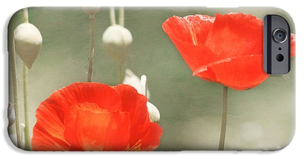Snake iPhone Cases - Red Poppies iPhone Case by Kim Hojnacki
