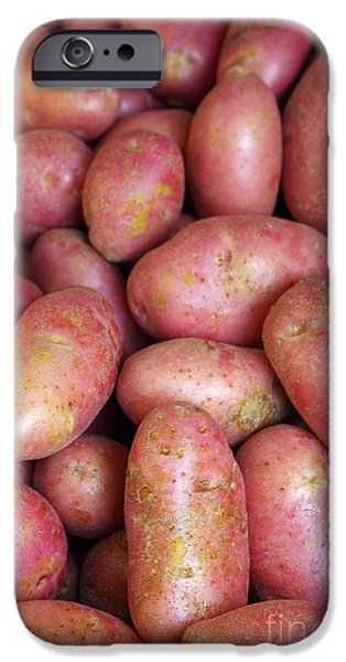 Farm iPhone Cases - Red Potatoes iPhone Case by Carlos Caetano
