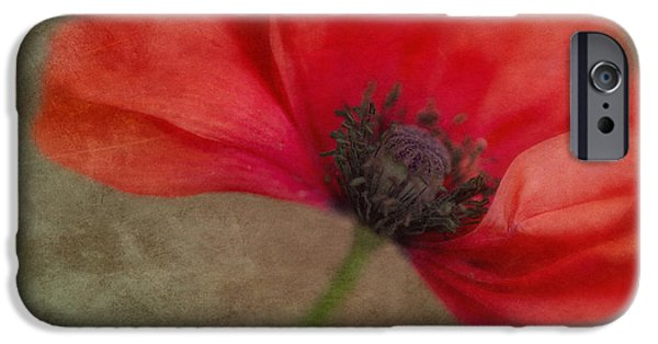 Close Up Floral iPhone Cases - Red Poppy iPhone Case by Priska Wettstein