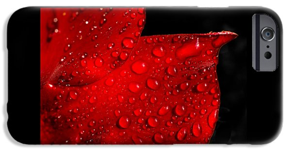 Raining iPhone Cases - Red Rain iPhone Case by Penny Meyers