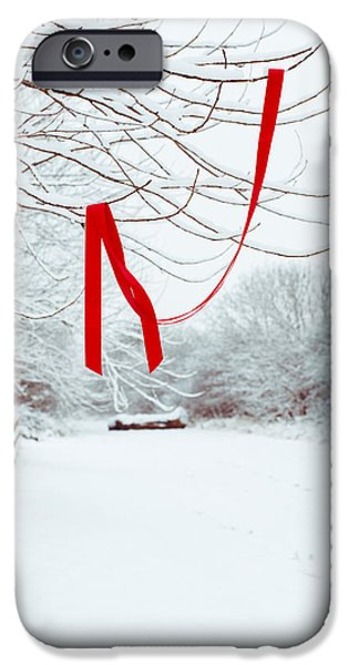 Red Photographs iPhone Cases - Red Ribbon In Tree iPhone Case by Amanda And Christopher Elwell