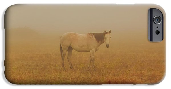 Fall Scenes iPhone Cases - Red Roan In Mist iPhone Case by Robert Frederick