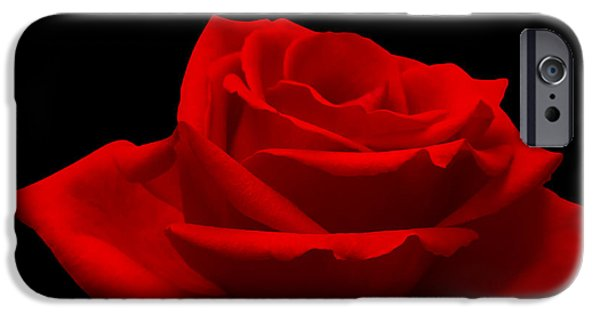 Ambiance iPhone Cases - Red Rose on Black iPhone Case by Wim Lanclus