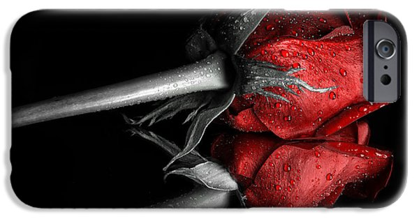 Raining iPhone Cases - Red Rose with drops colorkey iPhone Case by Sindy Stohler